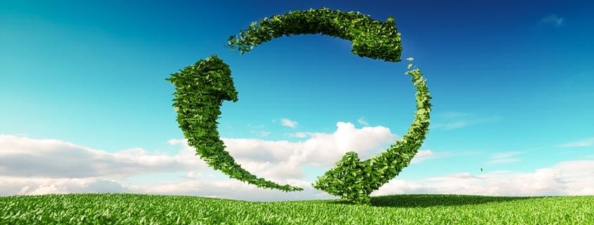 Nachhaltigkeit bei Rebmann